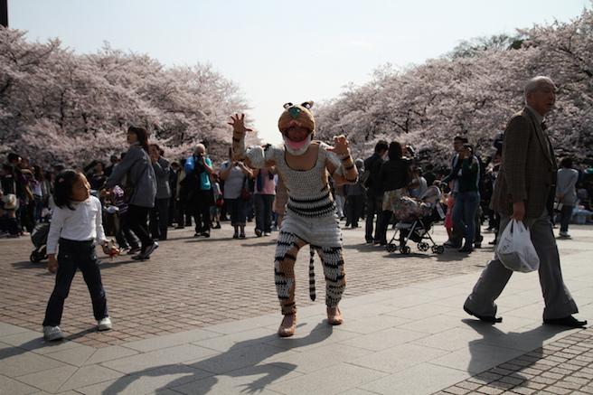 tiger_suit2010